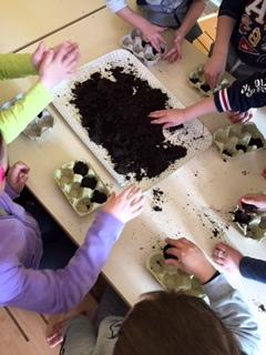 inseriamo i nostri semi